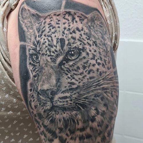 Tatoo leopard